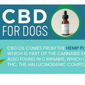 CBD dog aggression. Hemp oil for dogs