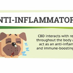 CBD dog treats before and after