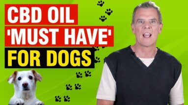 CBD Oil For Dogs (9 AMAZING Benefits Dogs MUST Have)