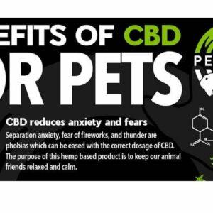 Dog takes CBD oil