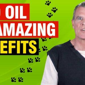 Benefits of Full Spectrum CBD Oil For Dogs (19 CONFIRMED Medical Benefits)