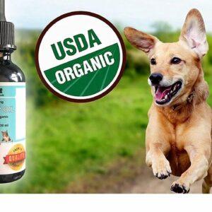 Pet relief CBD oil. Hemp Oil For Dogs